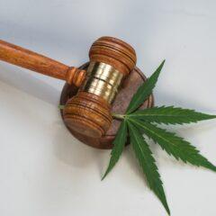 CBD Legality Business Cover e1618845853727